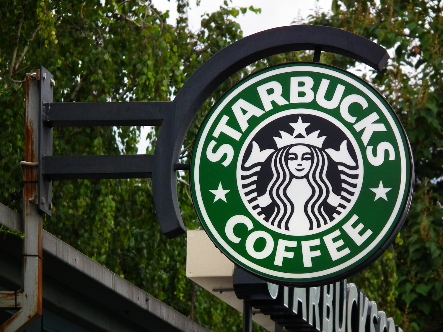 This pciture depicts the Starbucks logo